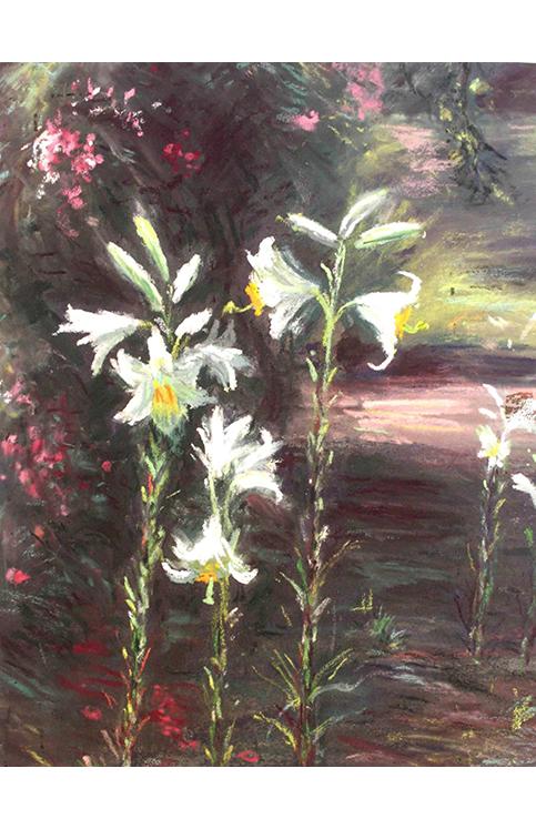 <p>Lys au jardin</p>